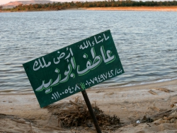 Oasis lakes of Siwa