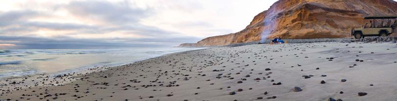 Classic Skeleton Coast